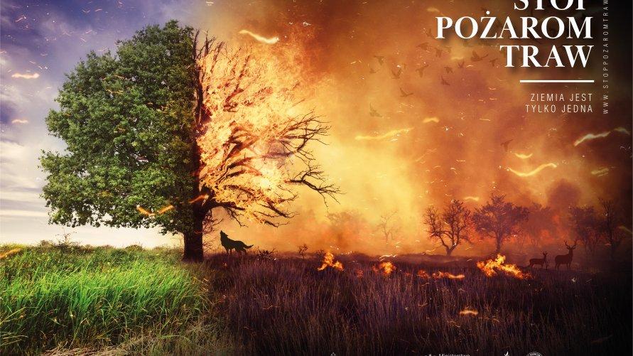 Mówimy STOP wypalaniu traw!